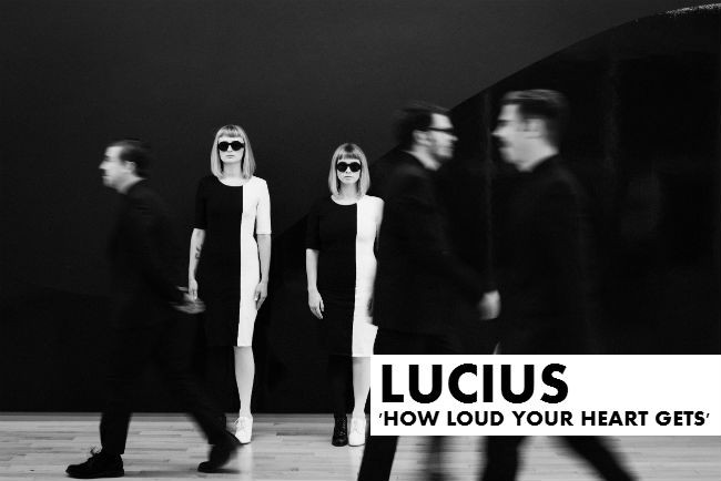 Lucius - 1 (Credit Peter Larson)