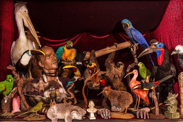 VIKTOR WYND'S MUSEUM OF CURIOSITIES 2