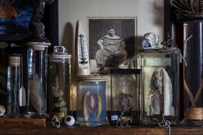 VIKTOR WYND'S MUSEUM OF CURIOSITIES LOTI