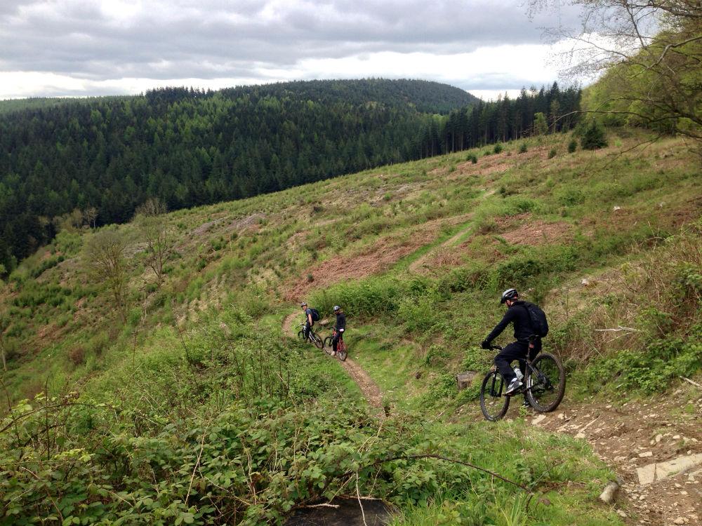 Muddy Cwtch trail