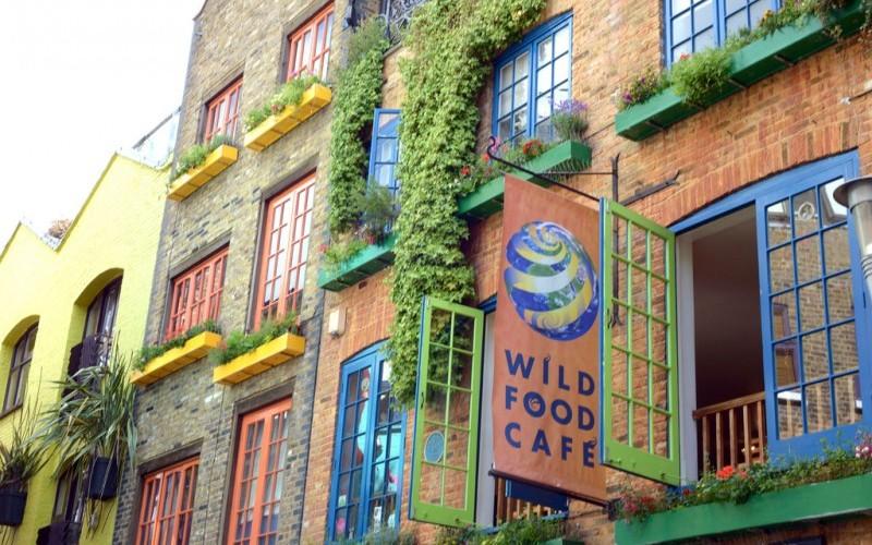wildcafe