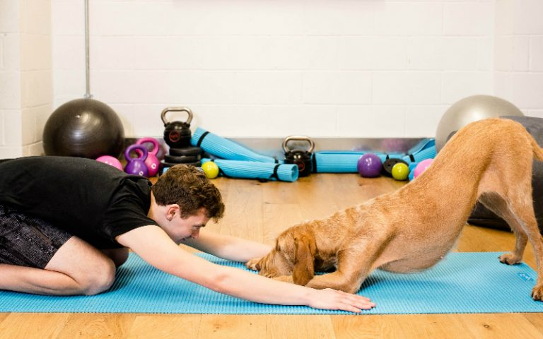 pets-ercise classes | london on the inside