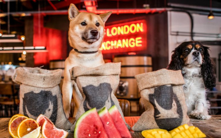 brewdog | london on the inside