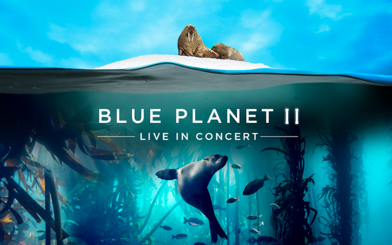 blue planet II | london on the inside