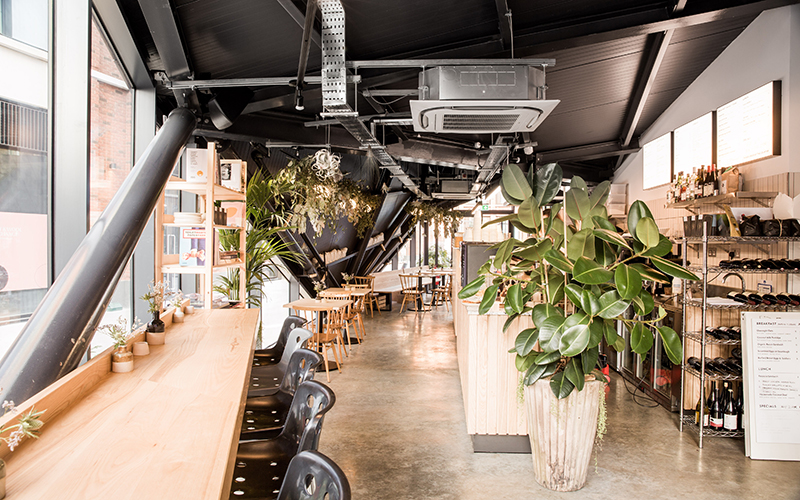 An interior shot of a coffee shop with plants