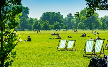 FREE SUMMER PICNIC IN LONDON FIELDS